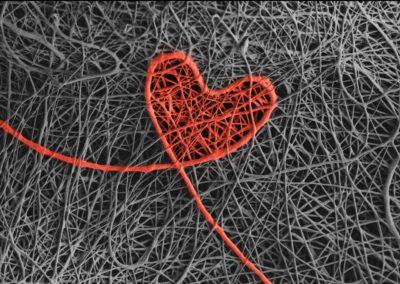 Gong, Liang - Electrospun Heart