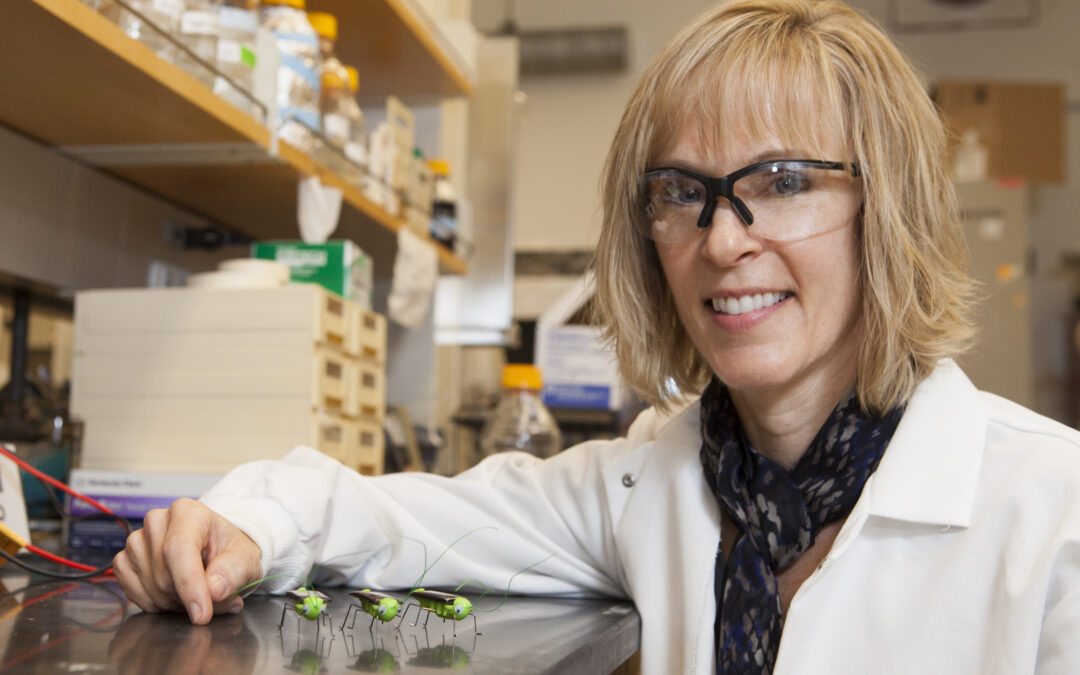 Kristi Kiick – Solar Crickets and Hydrogels