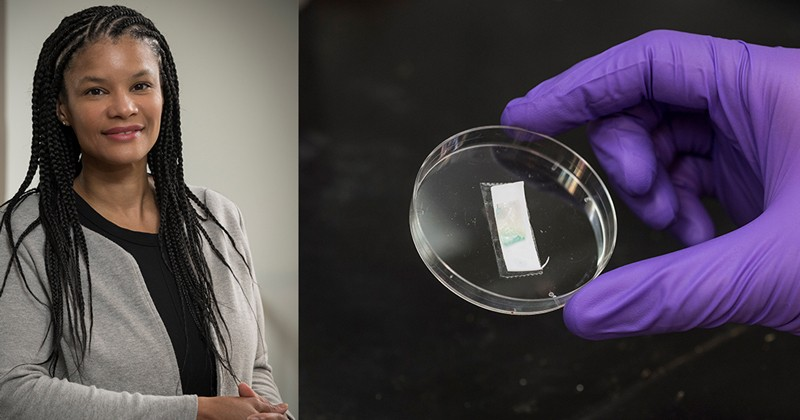 LaShanda Korley photo next to purple gloves holding petri dish
